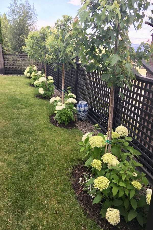 backyard landscaping ideas layout3
