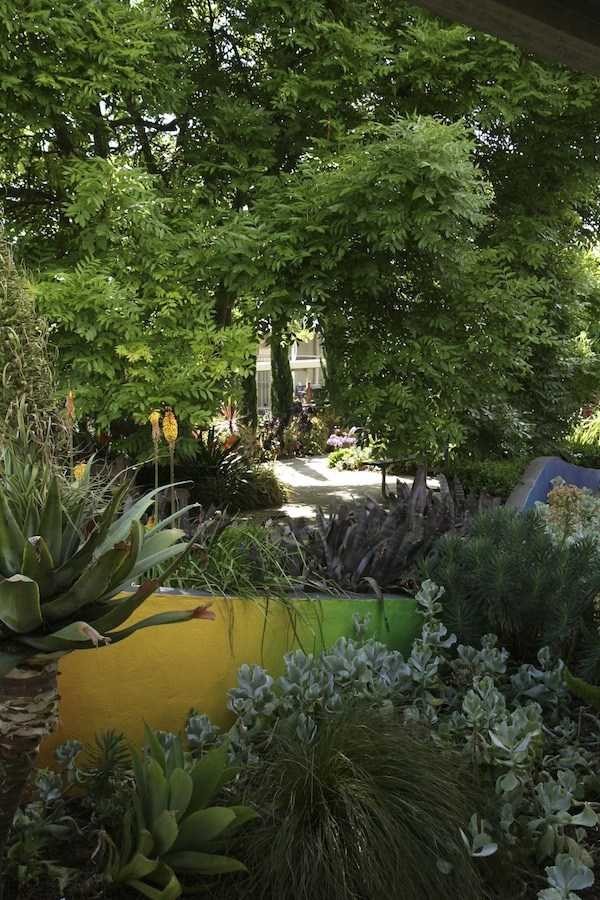 backyard landscaping ideas layout6