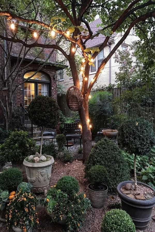 front yard ideas on a budget11