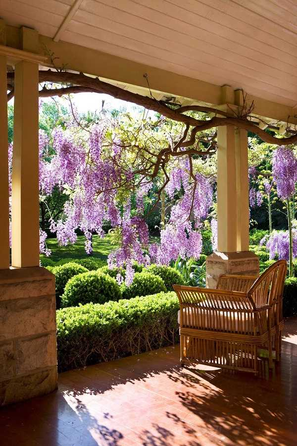 front yard ideas on a budget13