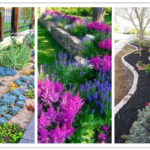 low maintenance front yard ideas