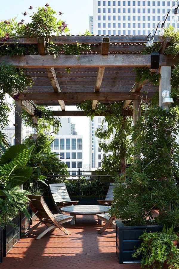 small garden design ideas3