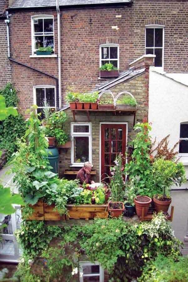 small garden design ideas4
