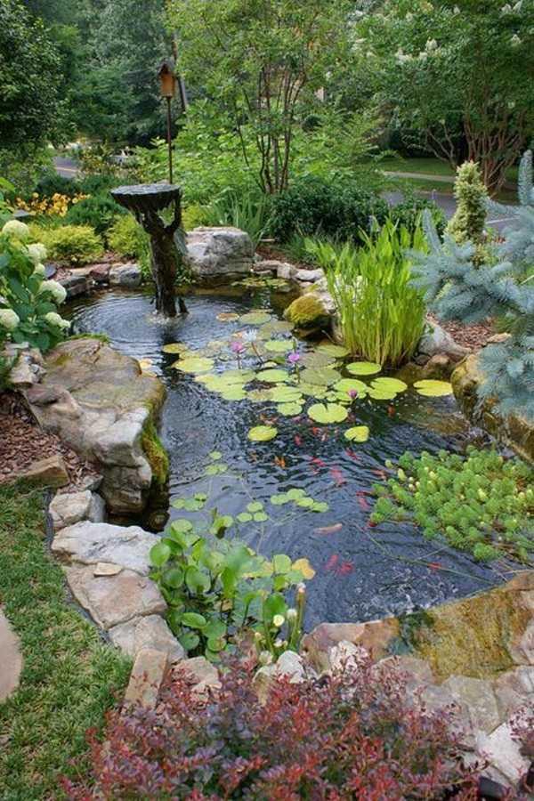 rain garden design ideas22