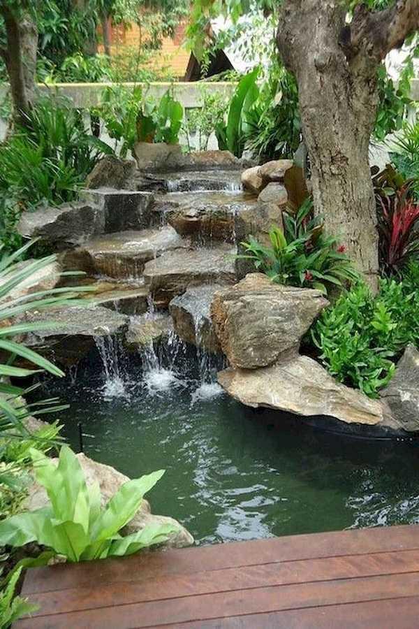 rain garden design ideas23
