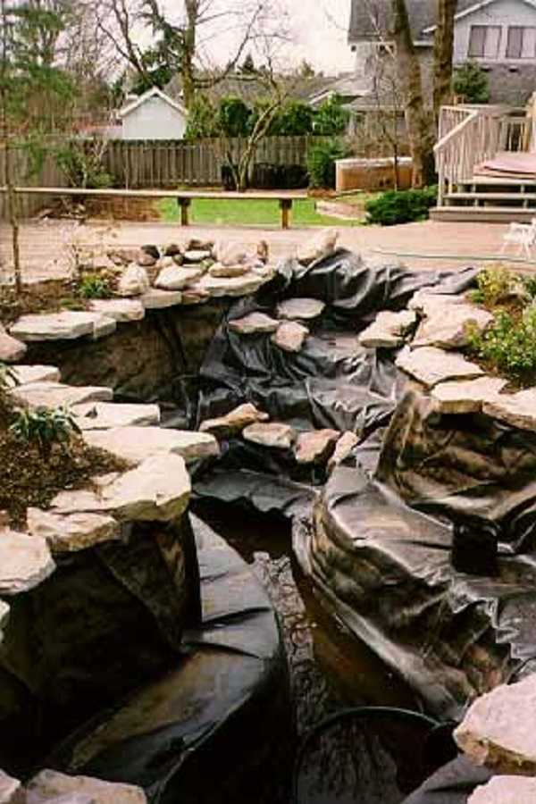 rain garden design ideas26