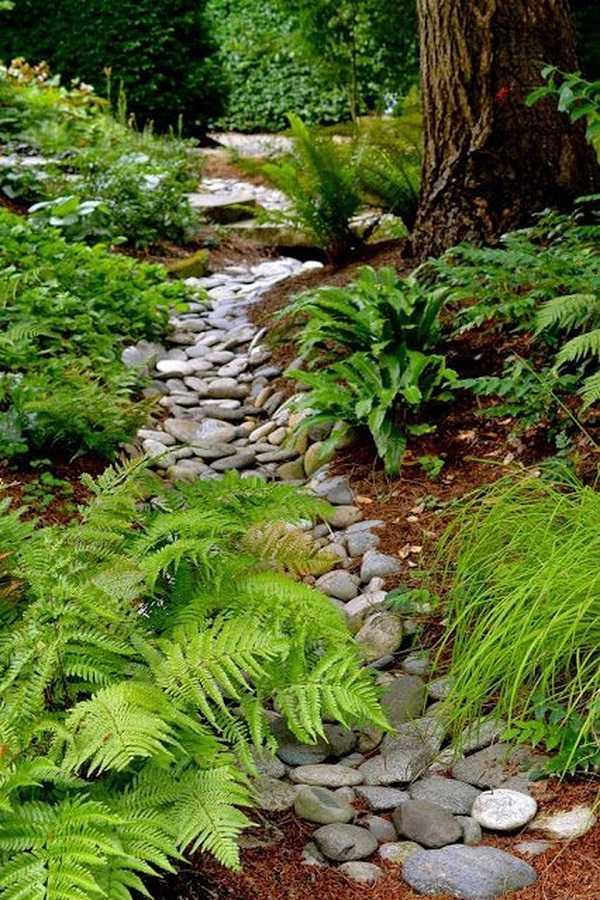 rain garden design ideas8
