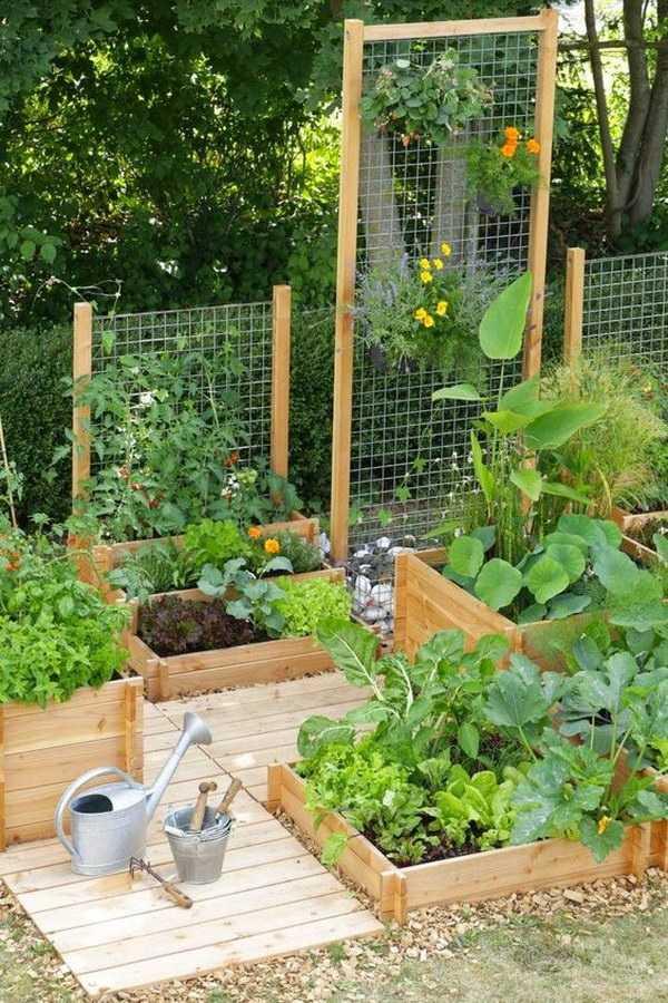 vegetable garden design23