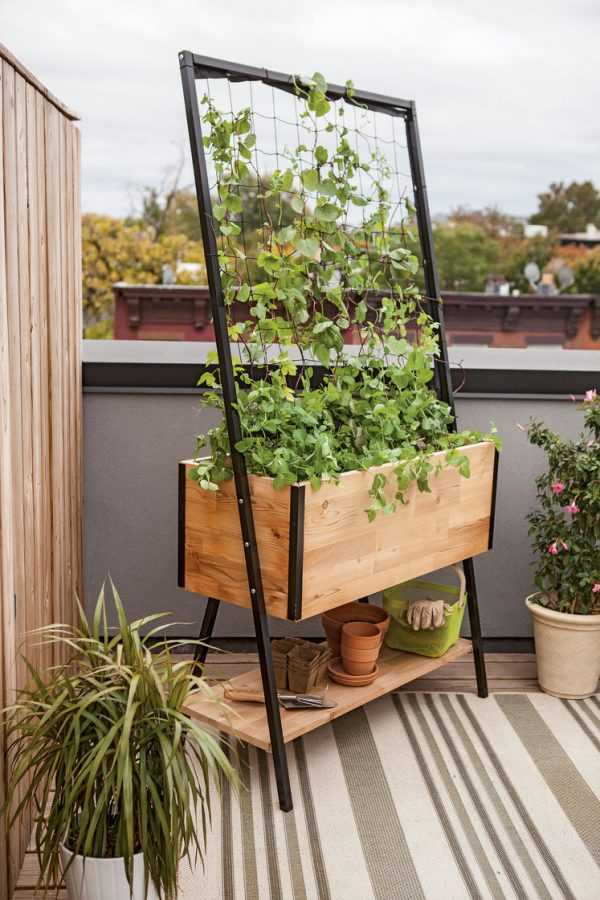 vertical garden ideas11