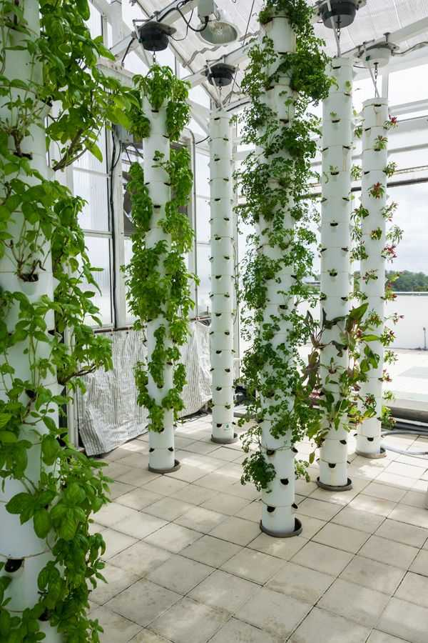vertical garden ideas17