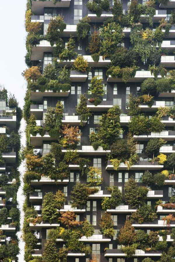 vertical garden ideas19