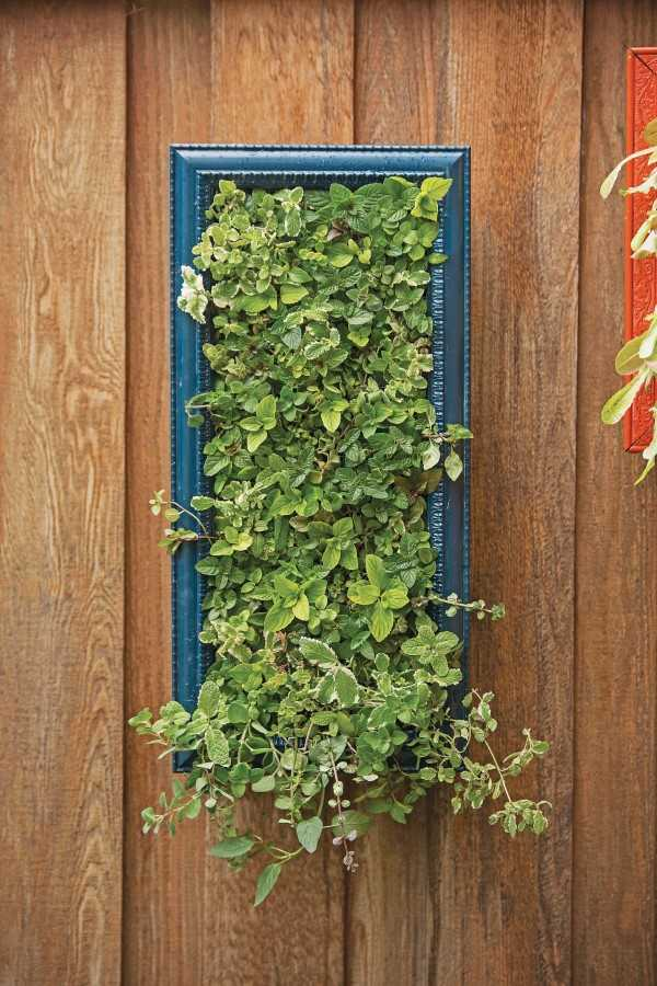 vertical garden ideas21