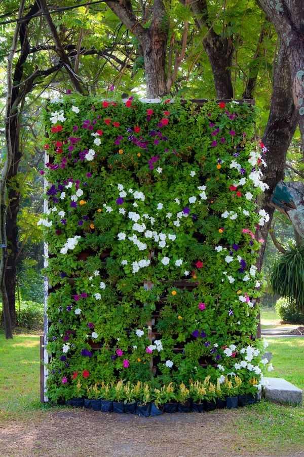 vertical garden ideas24