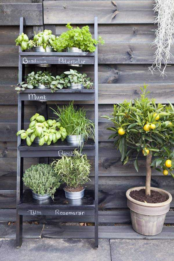 vertical garden ideas29